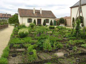 Klostergarten Seligenstadt